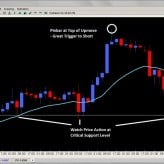 Forex Trade Signals and Setups Oct. 31st