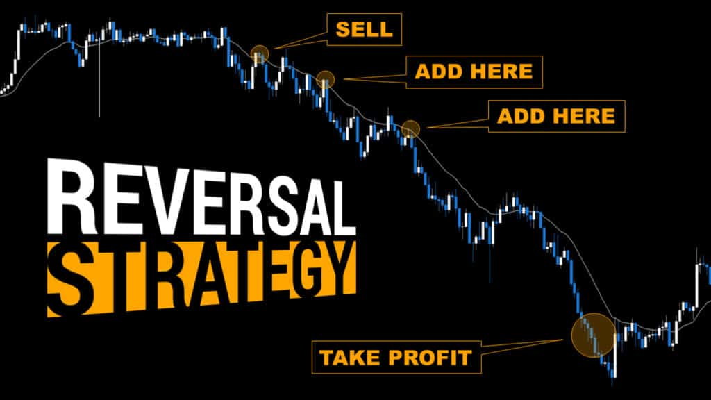 Top Forex Trade Review +288 Pips Day Trading EURGBP
